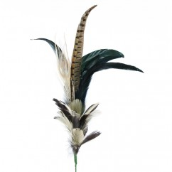 Pheasant, Peacock and Goose Feathers