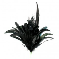 Pheasant Feathers - Dark