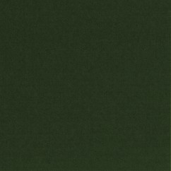 Boiled wool - Forest Green