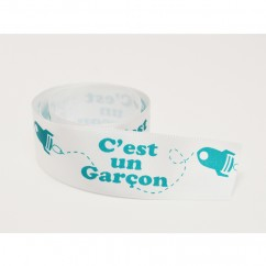 Single Face Satin Ribbon - C'est un garçon (French) - Aqua