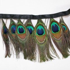 Peacock Eye Feathers Trim