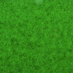 Boiled Wool Heavy Weight - Green