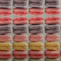 Stay dry digital printed PUL - Macaroons - multicolour