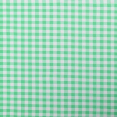 Bathing Suit Print - Checks - Green / White