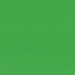 Broadcloth - Apple Green