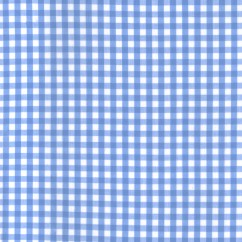 Gingham Check - Light Blue 1/4""