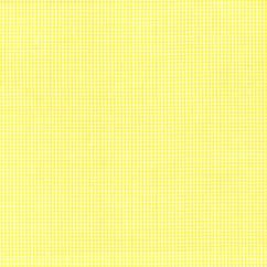 Gingham 1/16 Inch - Yellow